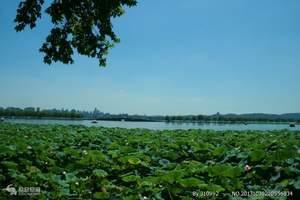 长春到【上海】乌镇、甪直双水乡、黄山双飞8日风采江南卓越团