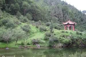 马牙雪山、青海北山国家森林公园、石门寺2日游