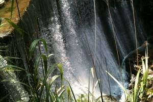 厦门旅游泉州晋江石狮  到厦门同安野山谷热带雨林休闲一日游