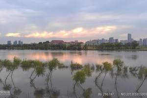 呼兰河口湿地一日游-呼兰河口湿地公园-哈尔滨呼兰河口湿地门票