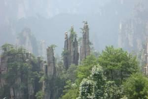 住景区客栈+张家界森林公园、袁家界天子山+大峡谷玻璃桥三天游