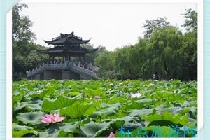 华东旅游自助游:南京到杭州、无锡二日游D线(天天发班)