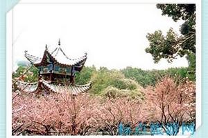 吉林到华东旅游_吉林去华东五市五日游_吉林到华东旅游攻略