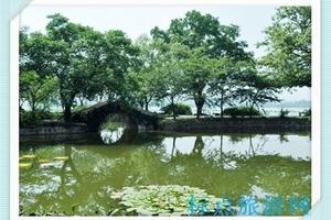 华东旅游自助游:南京到苏州、无锡二日游(狮子林A线天天发班)