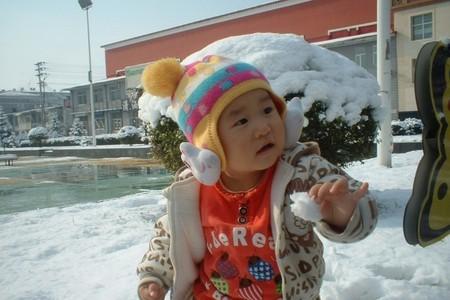 哈尔滨到亚布力滑雪自由行两日游(四条线路任您选,含火车票)