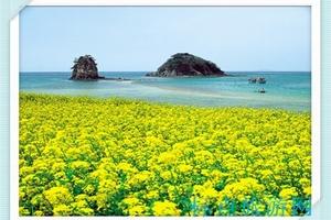 南京到日本旅游_新日本-本州古都温泉半自助7日游_南京往返