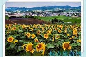 南京到日本-新日本-本州高品质赏樱经典6日游(上海往返)