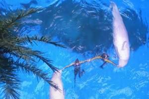 保定到北京动物园+海洋馆一日游