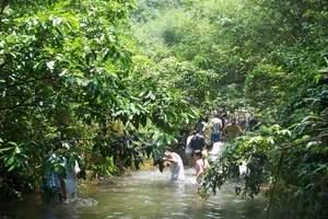 临安亲水溯溪一日游 杭州水上游玩 杭州玩水