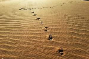 周末旅游去哪里 太极湾 老牛堡锦石峡 托县黄河景区神泉两日游