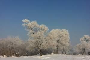 长春去吉林赏雾凇+滑雪二日游_长春去吉林雾凇岛旅游团行程