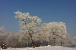 哈尔滨到亚布力雪乡穿越长白山吉林雾凇岛7日奢华穿越行程攻略