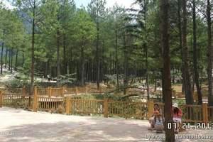 重庆涪陵周边赏花旅游|武陵山大裂谷、林下花园双景一日游