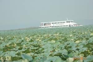 淄博出发到微山湖湿地公园、台儿庄、冠世榴园、温泉度假两日游