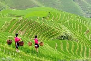 济南到龙脊梯田旅游-桂林、大漓江、象鼻山双飞五日游-特色线路