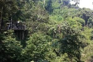 【宝鸡一日游】宝鸡旅行社红河谷森林公园一日游_红河谷线路