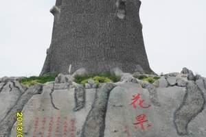 丹东到凤城大梨树一日游、采摘果农家院、大梨树景区一日游多少钱
