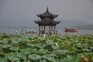 上海到杭州西湖+ 苏州园林精品二日游【热推疯抢限量-特惠】