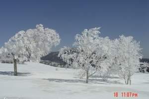 哈尔滨到雪乡品质两日游/雪乡两日游/雪乡旅游攻略含冰雪画廊