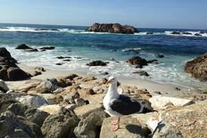 18年12月7号南极《海砖石》南极 阿根廷 智利 秘鲁26日