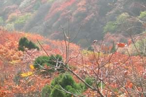 重庆到天下龙缸红叶季、大美龙洞二日游