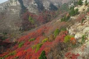 【嵩山红叶节】郑州嵩山一日游<嵩山红叶节什么时候开始>