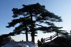 济南到泰山 东岳泰山一日游 天天发团