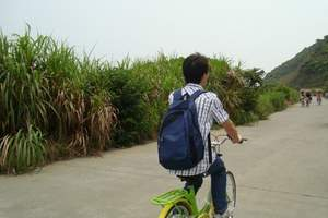 深圳南澳西冲两天游-看日出-杨梅坑骑单车-烧烤-早上中午发团