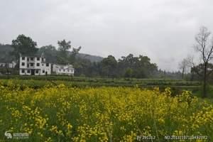 深圳大鹏美丽乡村赏花、生态园野炊、那片海亲子游戏一天亲子游