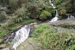 合肥到石台牯牛降旅游团购价_蓬莱仙洞、石桥步二日游