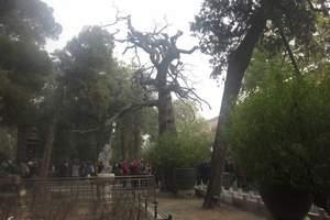 北京后花园