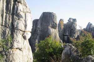 现在北京去云南报团旅游价钱 石林、大理古城、丽江古城四飞8日