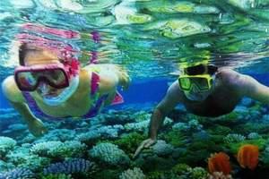 澳视映象8日游自由行  武汉到澳大利亚旅游