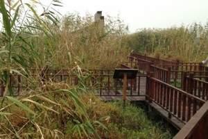 杭州出发下渚湖湿地+杨墩草莓采摘一日游<团队旅游线路>
