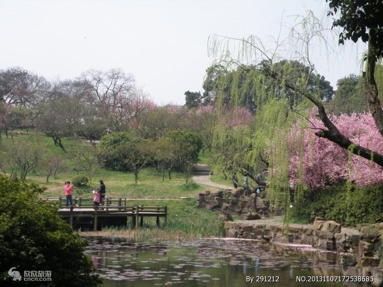 无锡梅园_梅园风景图片
