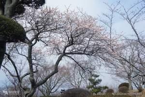 宁波去到日本东京名古屋富士山品质5日旅游特价团购价格