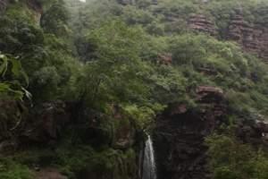 原山森林公园一日游可订票 可成团 淄博旅游