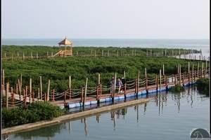 ◆北海至涠洲岛火山地质公园、豪华快船1日游(纯玩)