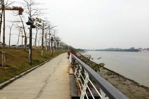 广州生物岛踩单车、小洲村烧烤一天【单团单议】