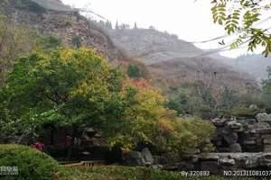 淄博出发、淄博出发到--济南金象山一日游