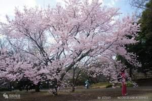 重庆到日本旅游  日本本州舌尖上的东京半自助温泉6日游