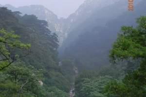 青岛出发到泰山看日出二日游|泰山看日出、一览众山小