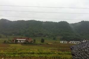 连云港出发到武汉,宜昌,休闲双卧双动五日游