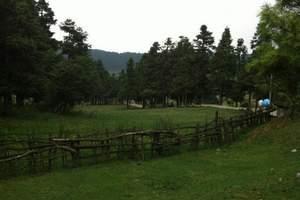 仙女山草原