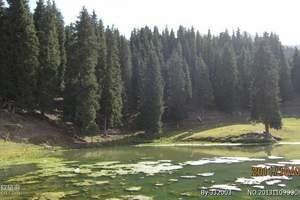 新疆乌鲁木齐出发到奇台江布拉克草原、五彩湾古海温泉休闲二日游