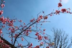 华东五市双飞6日游_品味江南品质行程