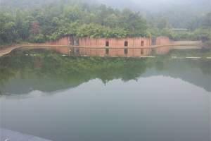 杭州到安吉中南百草原+大竹海+竹博园二日游<亲子线路>