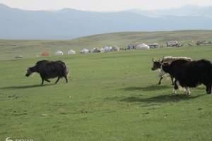 [新疆北疆巴音布鲁克环线纯玩7日游]乌鲁木齐北疆线路