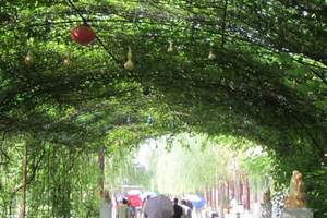 DT1-005  葫芦山庄关东民俗风情园一日游