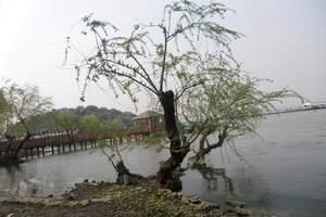 扬州到无锡动物园 太湖欢乐园、无锡海洋馆一日游